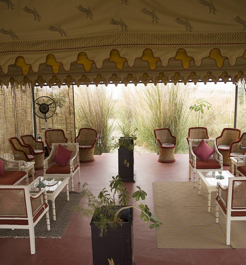 hotels in pali city rajasthan