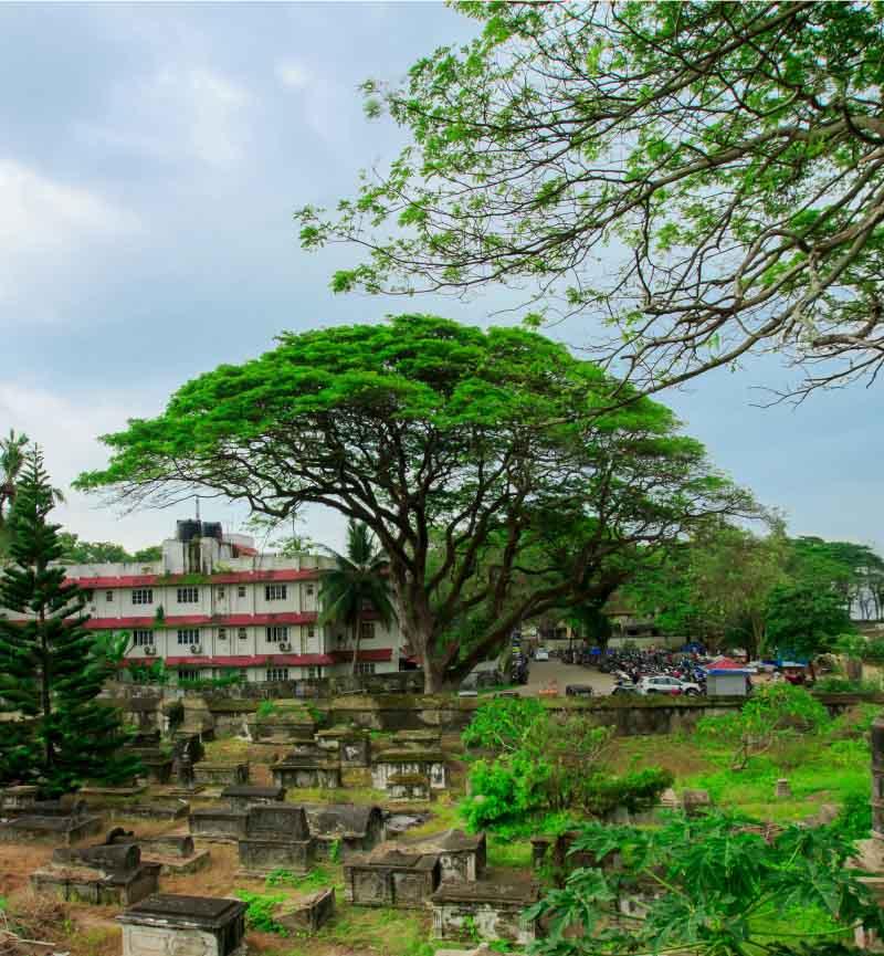 best resorts in kochi for family