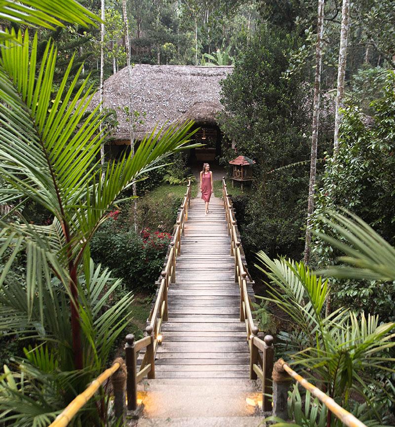 thekkady resorts