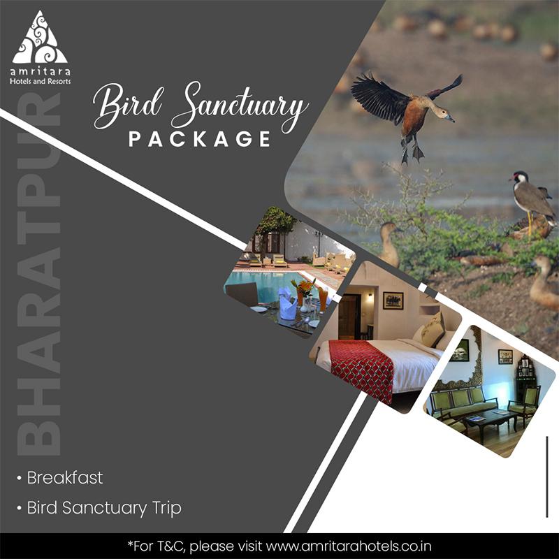Bird Sanctuary Package